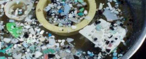 Plastiques : Pourquoi s'alarme-t-on soudain qu'ils polluent les mers ?