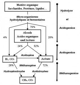 Méthanogenèse