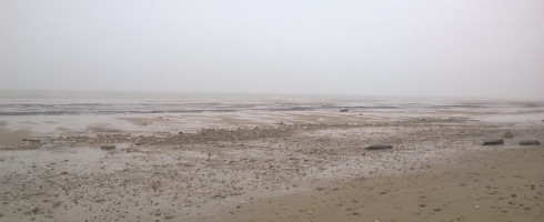 L'extraction du sable de nos côtes, un problème écologique déjà dévastateur