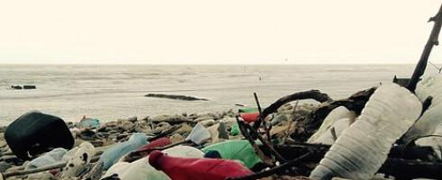 Rendez-vous pour les 1ères Rencontres Nationales des Collecteurs de Déchets Sauvages – 18/19 Mars 2016
